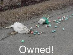 easter bunny owned