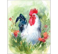 Watercolor Bird White Rooster  Original Painting by CMwatercolors