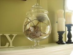 Hope Studios: Bird's Nest Home Decor...how to...want to make one for my bedroom window seal :)