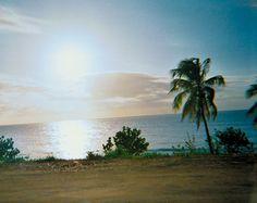 The Escape: A Postcard from the Rip Curl Pro in Rincon