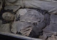 Cientistas encontram corpo de bebê escondido em caixão de bispo sueco sepultado há 350 anos | Jornal Ciência