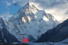 Image result for tallest buildings comparison chart everest