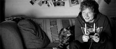 He's a cat person. | 21 Cute Facts You Really Ought To Know About Ed Sheeran