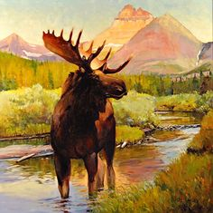 Swiftcurrent Bull by Rob Akey Moose Deer, Moose Art, Many Glacier, Wildlife Art, Pet Birds, Gallery, Illustration, Artwork, Oil