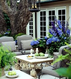 Beautiful outdoor space for Candle Impressions Outdoor Candles. Love how vibrant the green & purple is