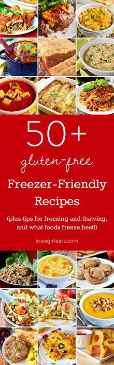 50+ Freezer-Friendly