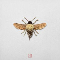 Artful Flower Arrangements Creating Colorful Insects Raku Inoue is an artist who continues creating floral insects with plants and flowers Art Et Nature, Nature Crafts, Fall Crafts, Arts And Crafts, Pine Cone Art, Pine Cone Crafts, Land Art, Art Floral, Bug Art