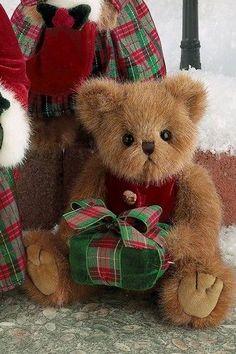Teddy Bear Christmas in red and green tartan plaid Tartan Christmas, Christmas Teddy Bear, Christmas Themes, Christmas Colors, Merry Christmas, Bear Pictures, Boyds Bears, Tatty Teddy, Love Bear