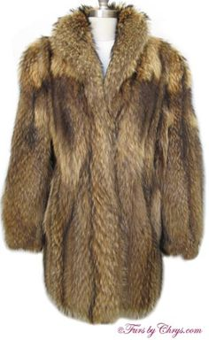 Tanuki Raccoon Fur Stroller Jacket #TR674; Very Good Condition; Size range: 8 - 12. This is a stunning genuine natural tanuki raccoon fur coat in the versatile stroller length. It has a Bill Blass Furs and Milton Kastil labels, and features a large shawl collar and gorgeous markings. There are two exterior velvet-lined pockets and one pocket hidden in the lining. The lining is solid taupe and there is an embroidered name monogram. It closes with hooks and eyes. Watch the heads turn!