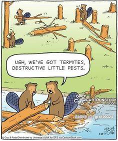 'Ugh, we've got termites, destructive little pests.'