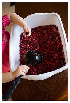 Cranberry Sensory Bin
