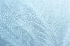 Tips voor het fotograferen van ijs: ijskristallen, ijsbloemen, ijshaar, ijssculpturen, ijsschotsen, rijp & meer