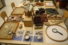 """Natural materials table at The Bing Institute at Bing Nursery School, Stanford University ("""",) Play Based Learning, Learning Spaces, Learning Environments, Early Learning, Play Spaces, Reggio Emilia Classroom, Reggio Inspired Classrooms, Reggio Emilia Approach, Preschool Science"""