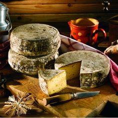 Montagne-tomme-de-savoie-fromage-de-lait-de-vache-à-pate-pressée-et-croute-fleurie-Savoie-France-Europe.