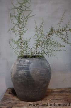 Chicken Wire, Sober, Vase, Diy, Home Decor, Style, Balinese Decor, Christmas Decor, Swag