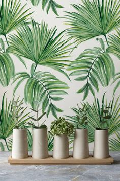 Esotiche foglie disegnate a mano modello rimovibile Wallpaper, sfondi esotici, verde foglie temporanea tappezzeria, 272