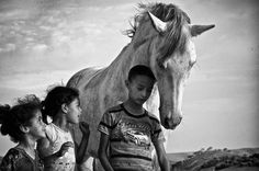 Whispering to a horse Photo by Srai Rachid -- National Geographic Your Shot