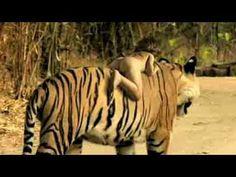 (1) REAL MOWGLI (ANALYSIS video !!!) - YouTube Wild Child, Videos, Wildlife, Rabbi, Africa, Children, Youtube, World, Olive Tree