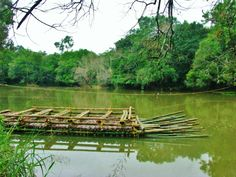 wayanad a tourist destination http://www.roadcompass.org/StoryDetails/Top-6-most-exotic-places-to-see-in-Wayanad