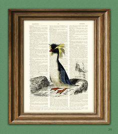 Macaroni Penguin illustration beautifully upcycled by collageOrama