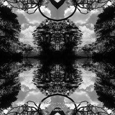 Armonía de Árboles. 1/4. Carlos De Vasconcelos. CMDVF. #CarlosDeVasconcelos #CMDVF #Diseño #Ilustración #Arte #Artista #BlancoyNegro #Armonía #Árboles / #Design #Illustration #Art #ArtWork #Artist #BlackAndWhite #bw #bnw #Harmony #Trees Illustration, Animation, Celestial, Black And White, Drawings, Artwork, Pictures, Painting, Outdoor