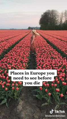 Vacation Places, Dream Vacations, Vacation Spots, Beautiful Places To Travel, Cool Places To Visit, Reisen In Europa, Future Travel, Travel Aesthetic, Adventure Is Out There