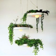 Fashion Style Nordic Aerial Flower Pot Chandelier Cafe Hanging Light Study Room Balcony Creative Personality Potted Plant Pendant Lamp Superior Materials Lights & Lighting