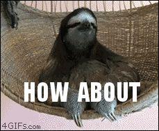 Sloth No