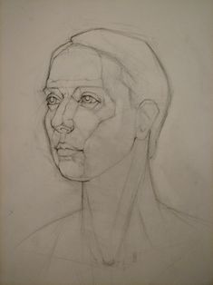 Plane Structure/Form Portrait Sketches, Portrait Art, Art Sketches, Art Drawings, Anatomy Art, Anatomy Drawing, Volume Art, Human Face Sketch, Drawing Face Shapes