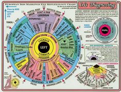 Discover Your Aura: Iridology