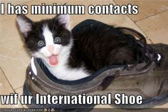 lol-law-school: Obviously my favorite lolcat of all time. I must have missed this lolcat in my civ pro/practice post back in July…awwwwww - this is still funny even years later Law School Humor, School Jokes, Exam Motivation, School Motivation, Funny Cat Photos, Funny Pictures, Lawyer Humor, Civil Procedure, Legal Humor