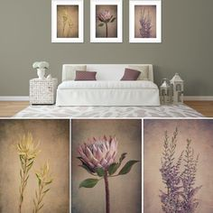 """""""Protea&Fynbos"""" print set - prints framed in white by Natascha van Niekerk Fine Art Photography Bedroom Colors, Bedroom Decor, Blue Flower Wallpaper, Diy Room Decor For Teens, Simple Pictures, Pretty Pictures, Custom Wallpaper, Inspired Homes, Decorating Your Home"""