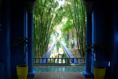 Google Image Result for http://www.only-apartments.com/images/only-apartments/5022/majorelle-garden-marrakech.jpg