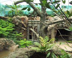 Voyage to Australia and the Islands, Columbus Zoo  Columbus, Ohio