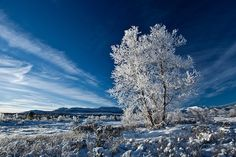 Enjoy great skiing and sunshine in the mountains of Hovden, Norway!