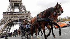 """Pferdeparade: Mit Pferdekutschen unter dem Eiffelturm hindurch! Zum 20. Mal findet in Paris der """"Paris Horse Salon"""" statt, bei dem traditionell auch eine Parade durch die Innenstadt der französischen Hauptstadt stattfindet. Mehr Bilder des Tages auf: http://www.nachrichten.at/nachrichten/bilder_des_tages/ (Bild: AFP)"""