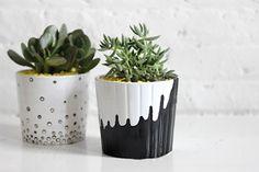 Macetas bonitas para cactus   Mi Casa es Feng