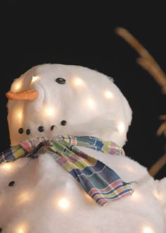 Homemade Frosty in Kanab, Utah. This is pretty cool. It's a wire Frosty with lights inside and then a cotton batting covering it. I like the homemade scarf, button eyes and mouth and the carrot nose.