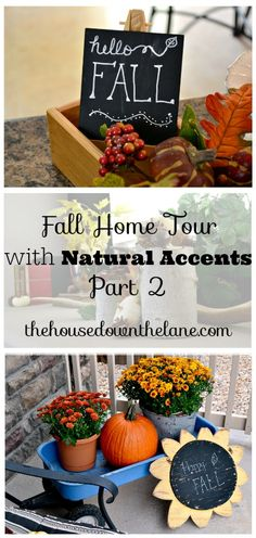 Welcome to my Fall Home Tour with Natural Accents, Part 2! There's nothing I love more than bringing the outside in, so that's just what I did for my very first home tour!   The House Down the Lane