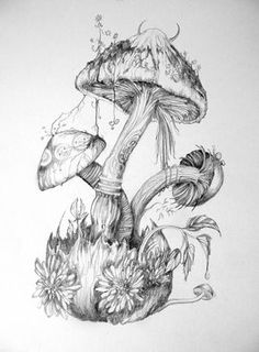 DeviantArt is the world's largest online social community for artists and art enthusiasts, allowing people to connect through the creation and sharing of art. Mushroom Drawing, Mushroom Art, Drawing Sketches, Pencil Drawings, Sketching, Illustration Inspiration, Mushroom Tattoos, Fairy Drawings, Tree Drawings