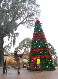TOT Hot or Not - Sovereign Hill Winter Wonderlights Review