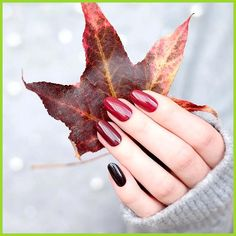 Nails 48 Must Try Fall Nail Designs And - Ongles 48 faut essayer les conceptions d& - Fall Nail Art, Fall Nail Colors, Autumn Nails Acrylic, Acrylic Nails, Color For Nails, October Nails, Almond Shape Nails, Almond Nails, Fall Nail Designs