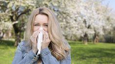 #De la rinitis crónica al ambiente: cuáles son las alergias más comunes de los argentinos - Infobae.com: Infobae.com De la rinitis crónica…