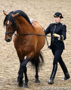 Cadre Noir, Treasure française d'Equitation | Laurence Sautet avec le Lusitanien, Ralo