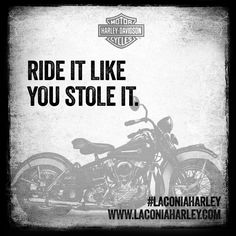Harley Davidson Quotes the best path through life is the open road orlandoharley Harley Davidson Quotes. Harley Davidson Quotes the best things in life are dangerous motorcycles and women th id oip w 190 h. Motorcycle Humor, Motorcycle Posters, Motorcycle Helmets, Women Motorcycle Quotes, Motorcycle Style, Biker Style, Harley Davidson Quotes, Harley Davidson Motorcycles, Ride Out