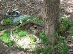 Fairy house in the woods. I have a perfect tree for a fairy house below it...