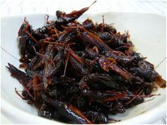 Inago [No] Tsukudani - locusts simmered in sweetened soy sauce - from Japan