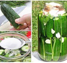 Kovászos uborka kezdőknek - lépésről lépésre - Blikk Rúzs Pickles, Cucumber, Food And Drink, Drinks, Food Ideas, Kitchens, Food And Drinks, Recipies, Drinking