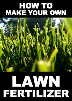 How to make your own lawn fertilizer