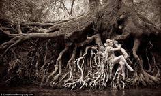 Dryad: a nymph clings to giant tree roots suspended over the river